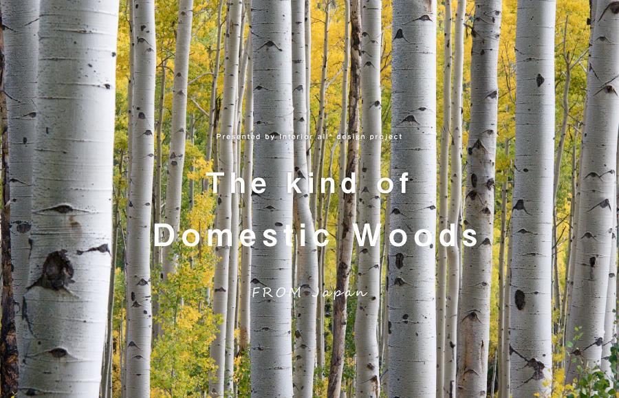 家具の材料となる「国産木材」の種類と特徴