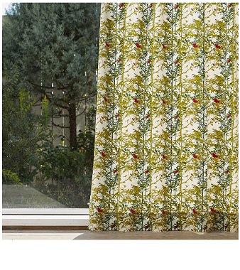 森のカーテン