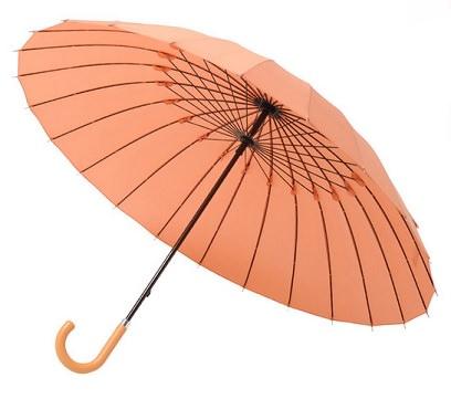 和傘っぽい傘